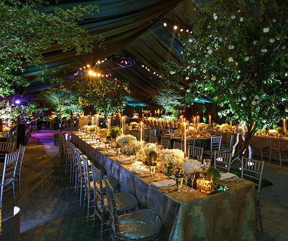 ea95ca8ee8b996482a4b705c56129fb5 tent wedding wedding trees - Аренда шатра для частных мероприятий